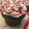 Candy Cane Chocolate Cupcakes With Peppermint Buttercream Frosting
