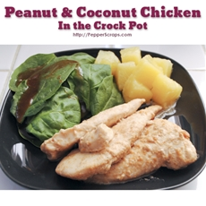 Peanut & Coconut Chicken in the Crock Pot | Pepper Scraps